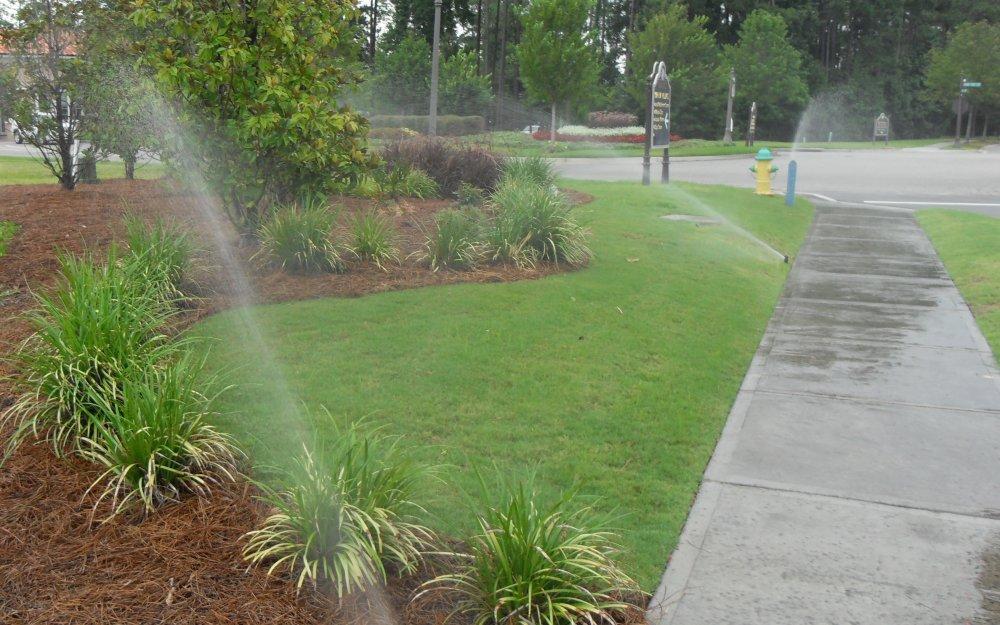 irrigation06